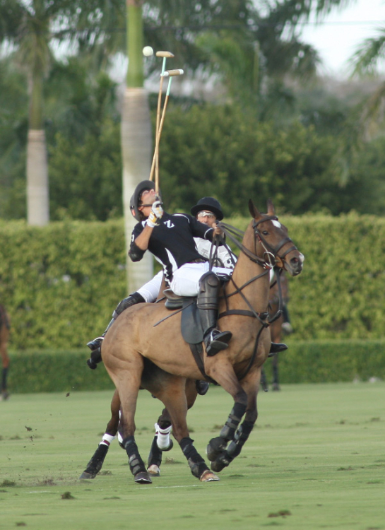 Zacara Polo Team v Lucchese Polo Team