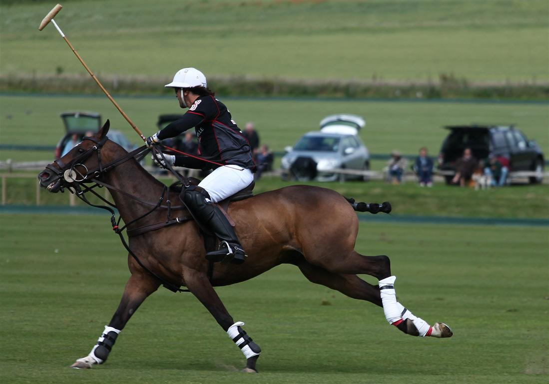 Celine MP Genonceau-British Gold Cup 2012