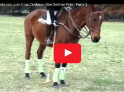 Don German Polo. Pilar, Argentina.