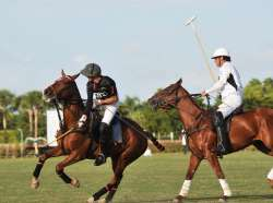 Polo Will Never be the Same