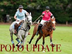 Polo Update